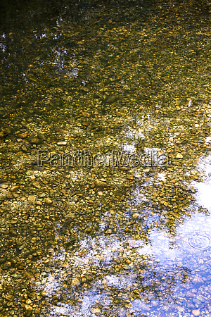reflection of water