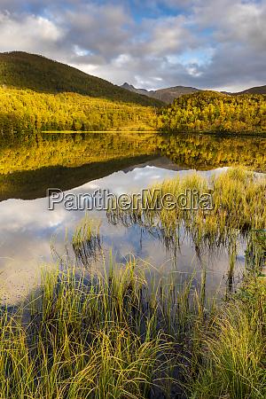 lake reflection autumn colour senja norway